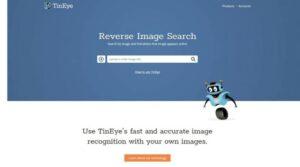 Buscador de imágenes idénticas TinEye