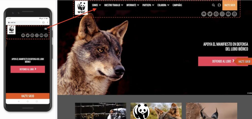 The World Wildlife Fund (WWF)