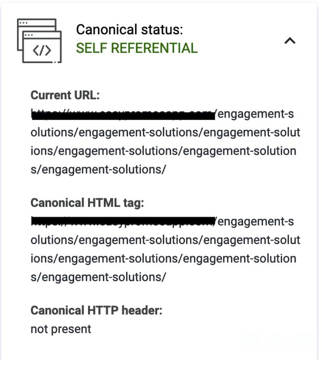 URL canonical con el path duplicado