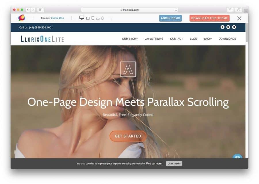 Elección de una Plantilla de WordPress Adecuada 4