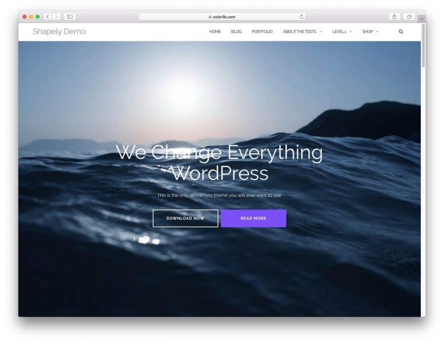Elección de una Plantilla de WordPress Adecuada 8